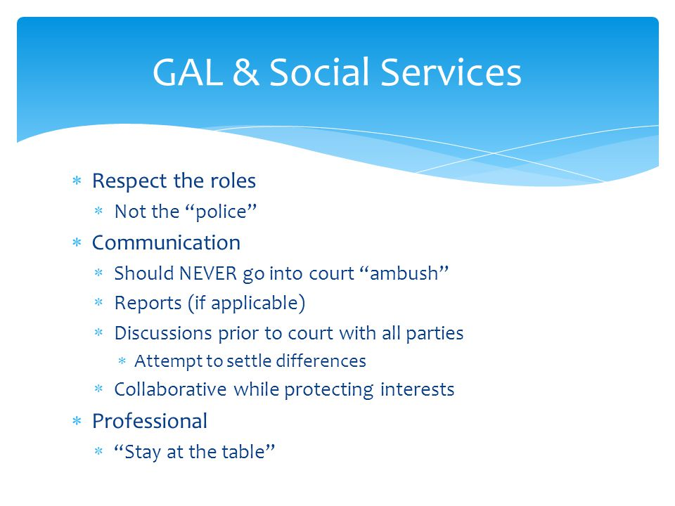 GAL & Social Services Respect the roles Communication Professional