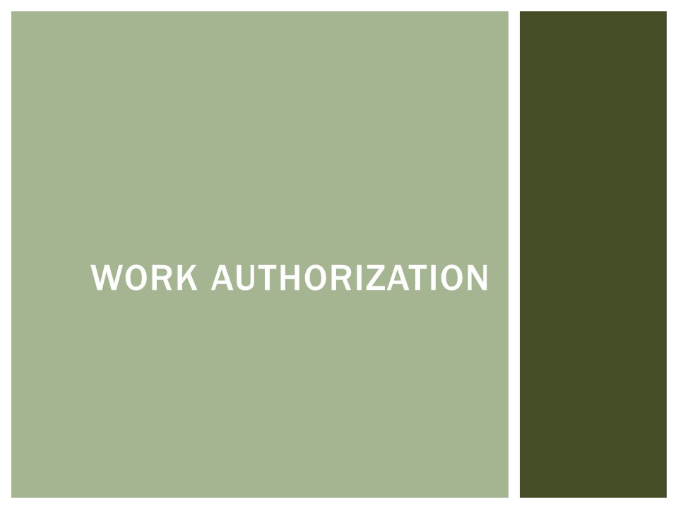WORK AUTHORIZATION