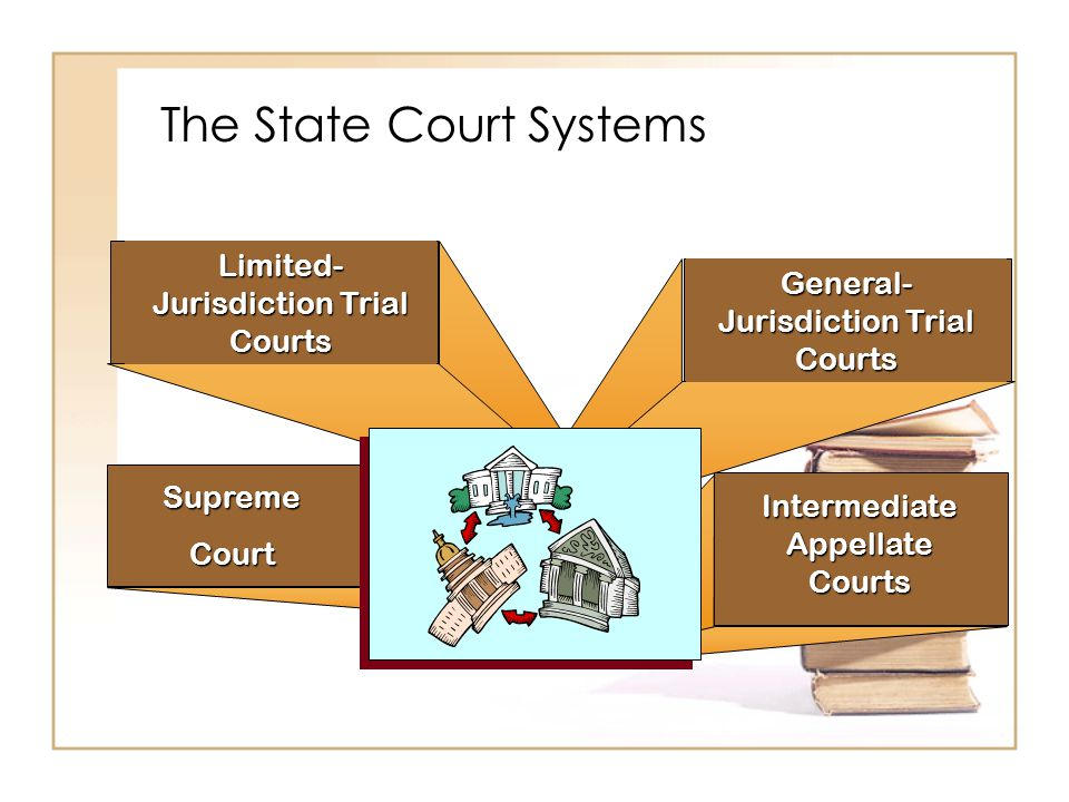 The State Court Systems