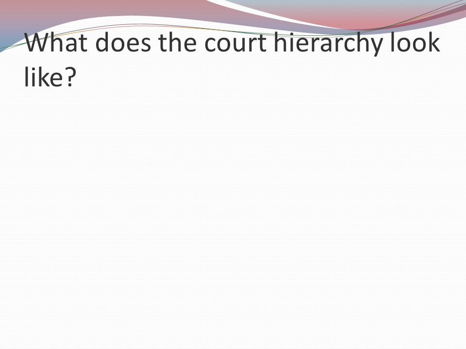 What does the court hierarchy look like