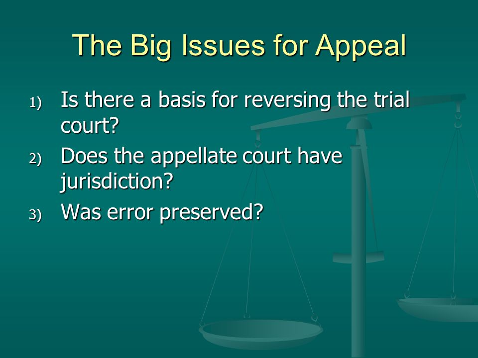 The Big Issues for Appeal