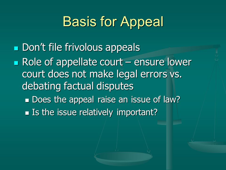 Basis for Appeal Don't file frivolous appeals