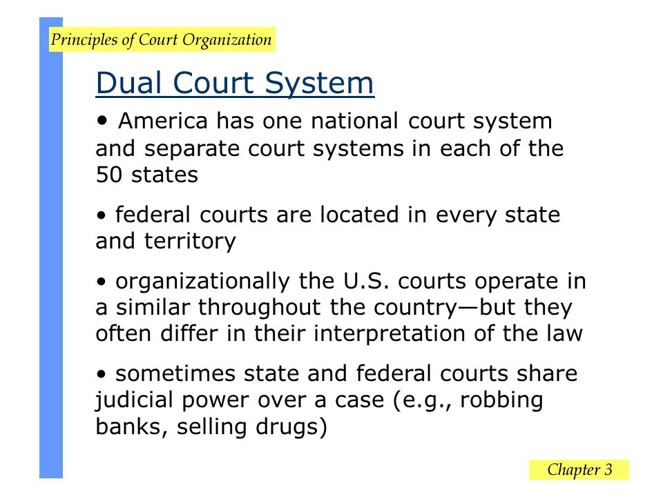 Dual Court System America has one national court system and separate court systems in each of the 50 states.
