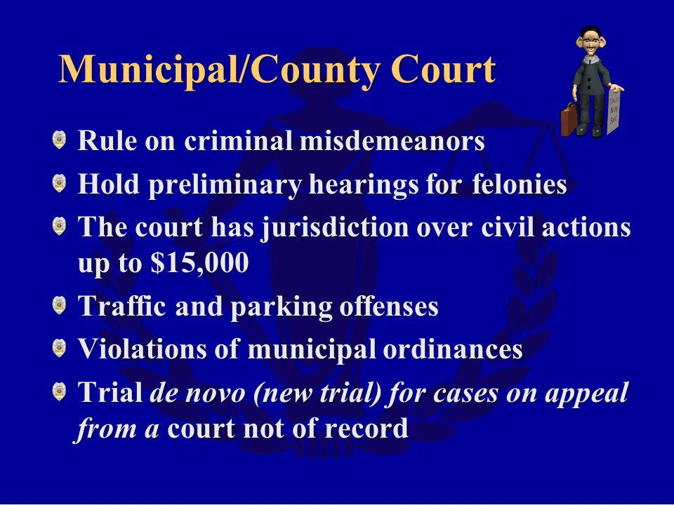 Municipal/County Court