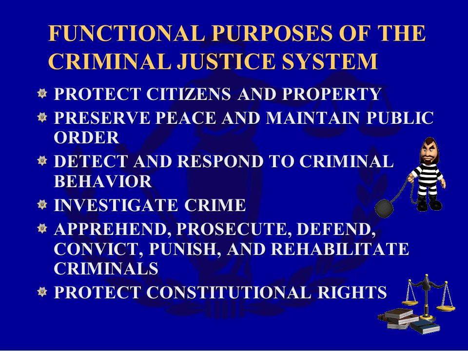 FUNCTIONAL PURPOSES OF THE CRIMINAL JUSTICE SYSTEM