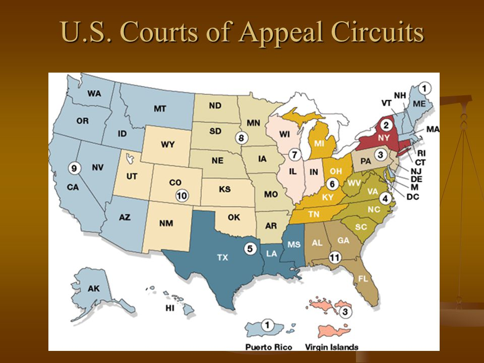 U.S. Courts of Appeal Circuits
