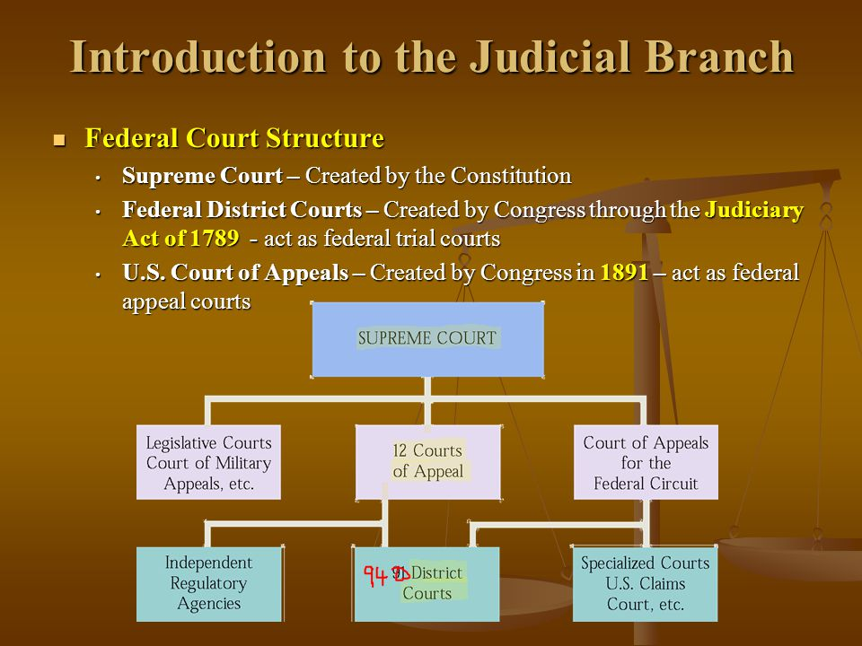Introduction to the Judicial Branch