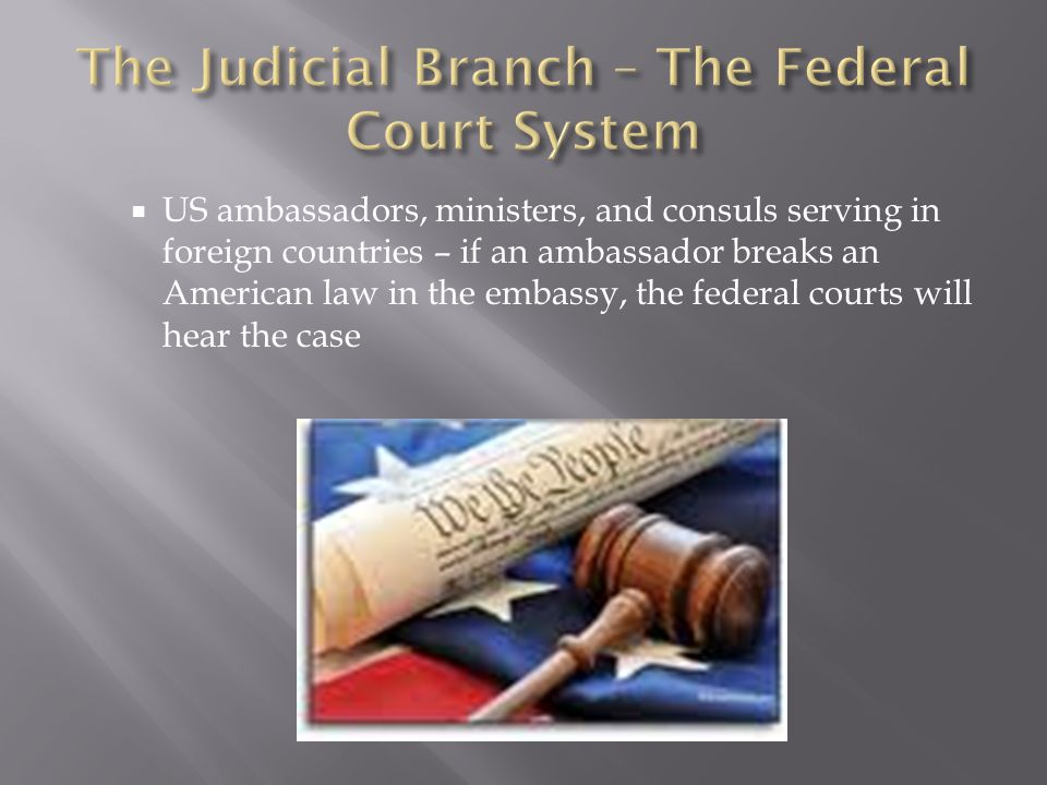 The Judicial Branch – The Federal Court System