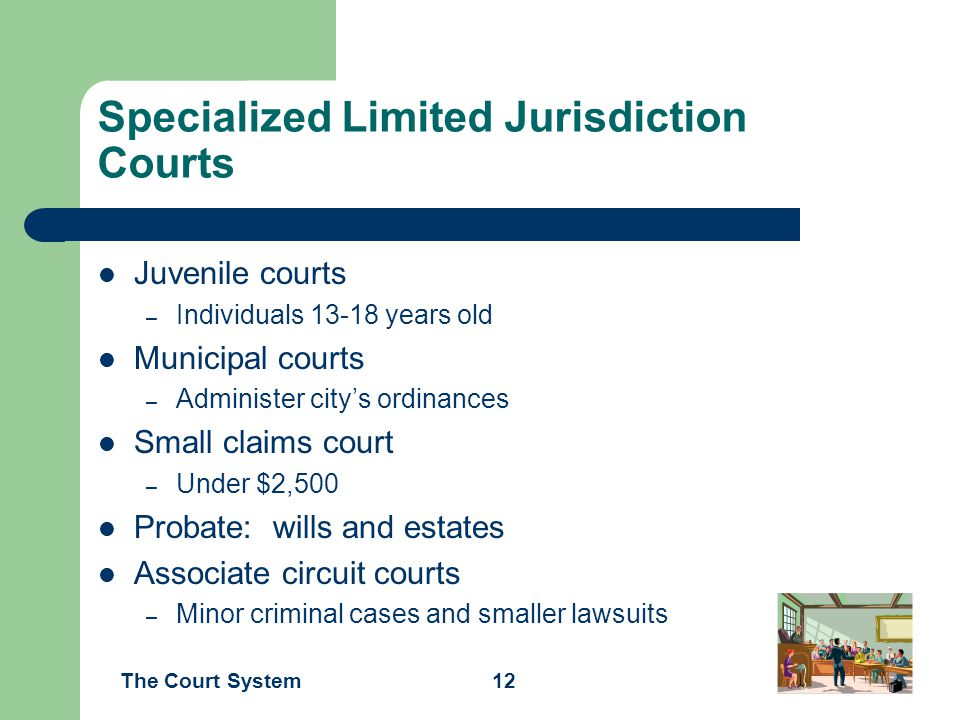 Specialized Limited Jurisdiction Courts