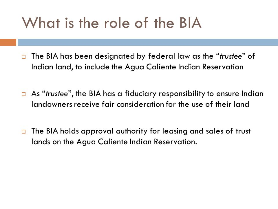 What is the role of the BIA