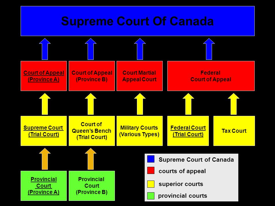 how to win in the tax court of canada