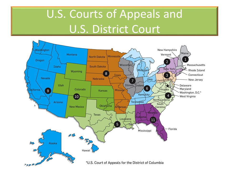 U.S. Courts of Appeals and U.S. District Court