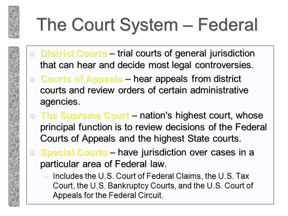 The Court System – Federal