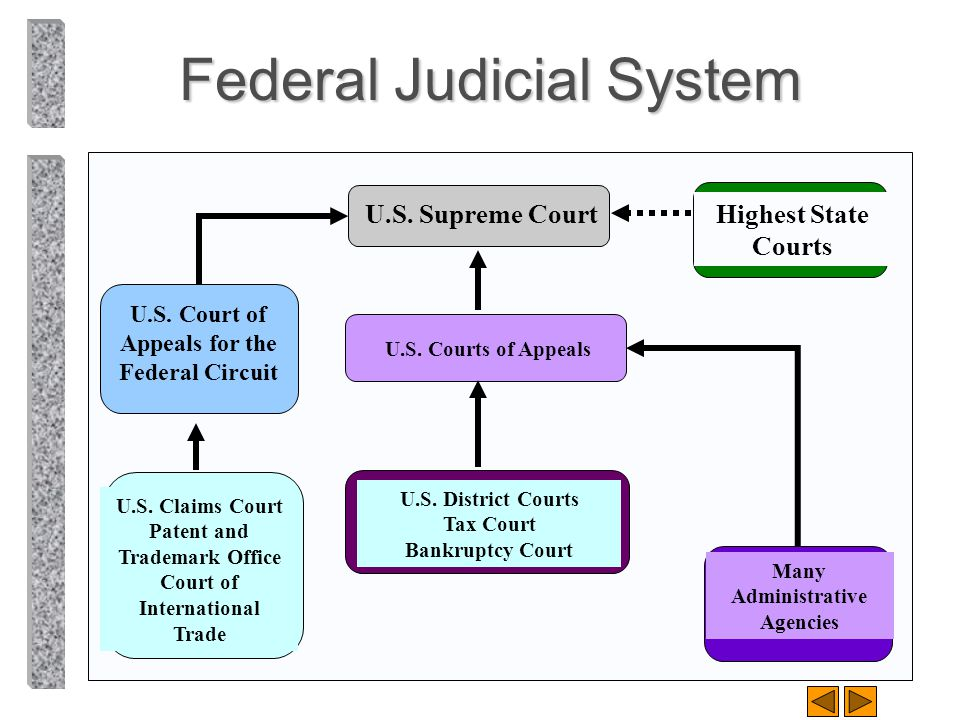 By richard a mann barry s roberts ppt download - Us courts administrative office ...