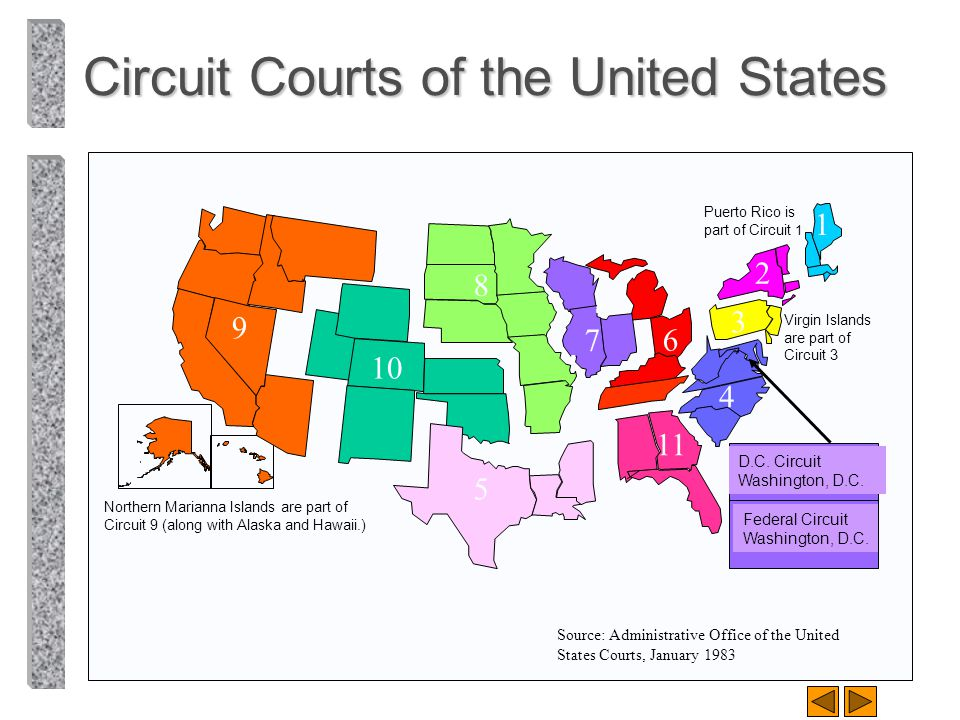 Circuit Courts of the United States