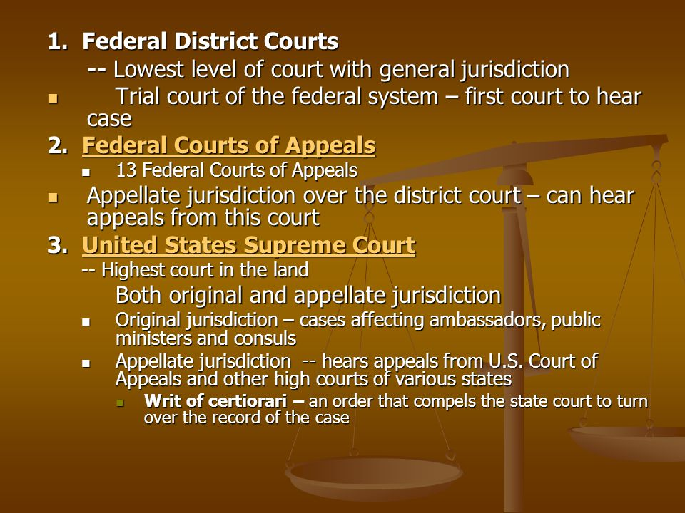 1. Federal District Courts