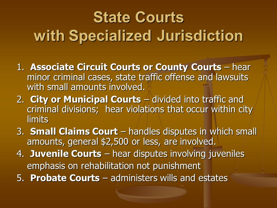 State Courts with Specialized Jurisdiction