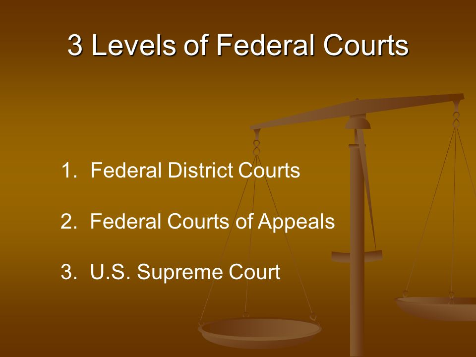 3 Levels of Federal Courts