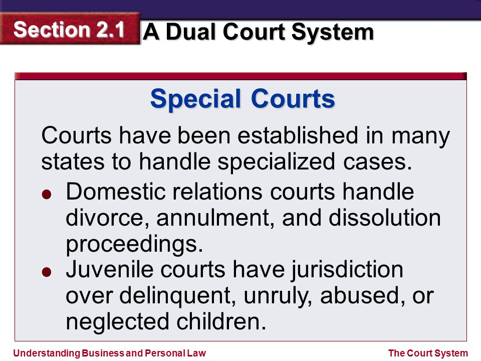 Special Courts Courts have been established in many states to handle specialized cases.