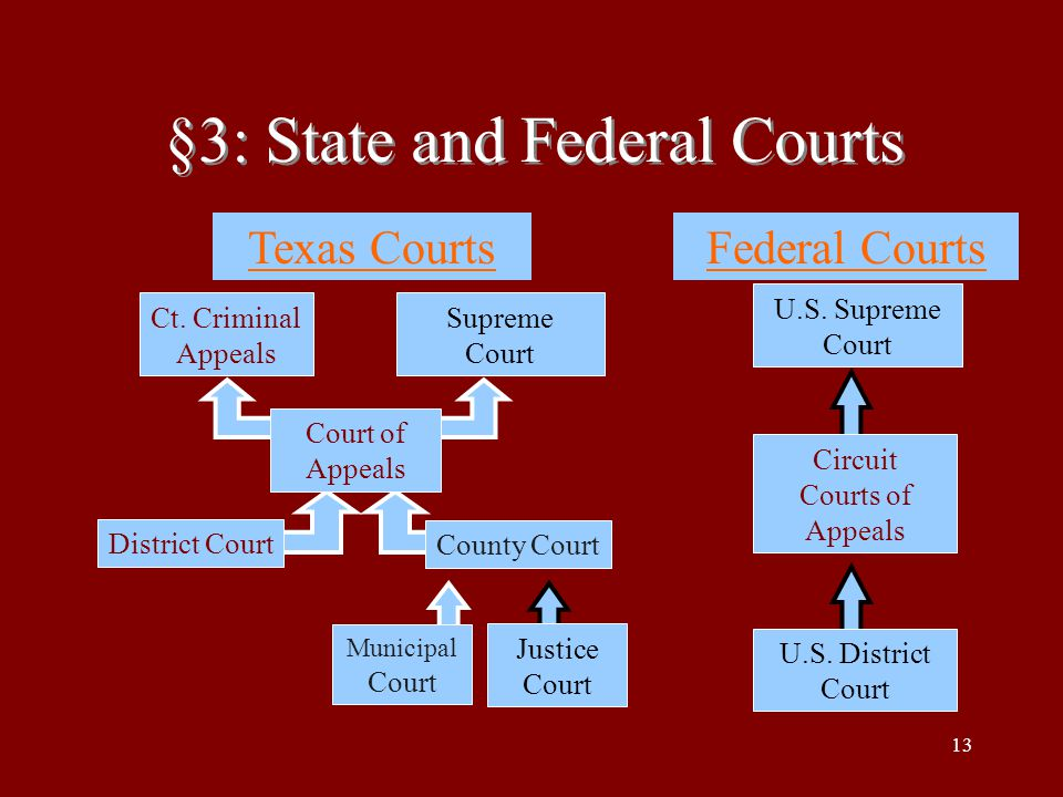 §3: State and Federal Courts