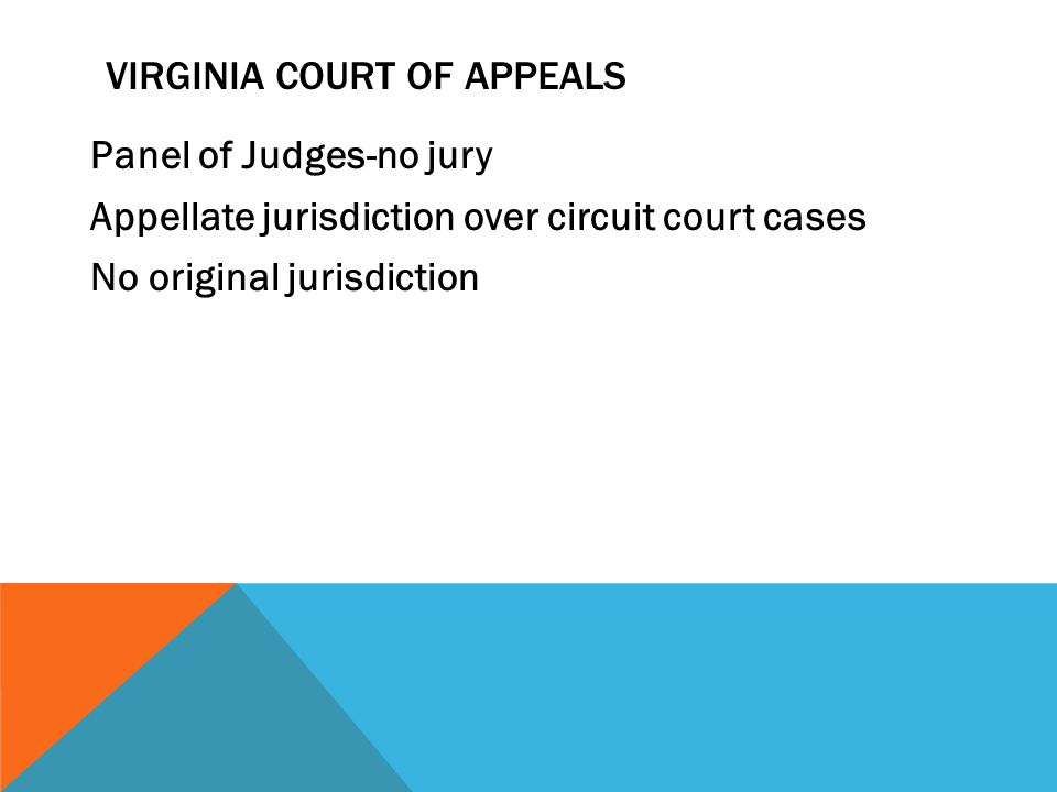 Virginia court of appeals