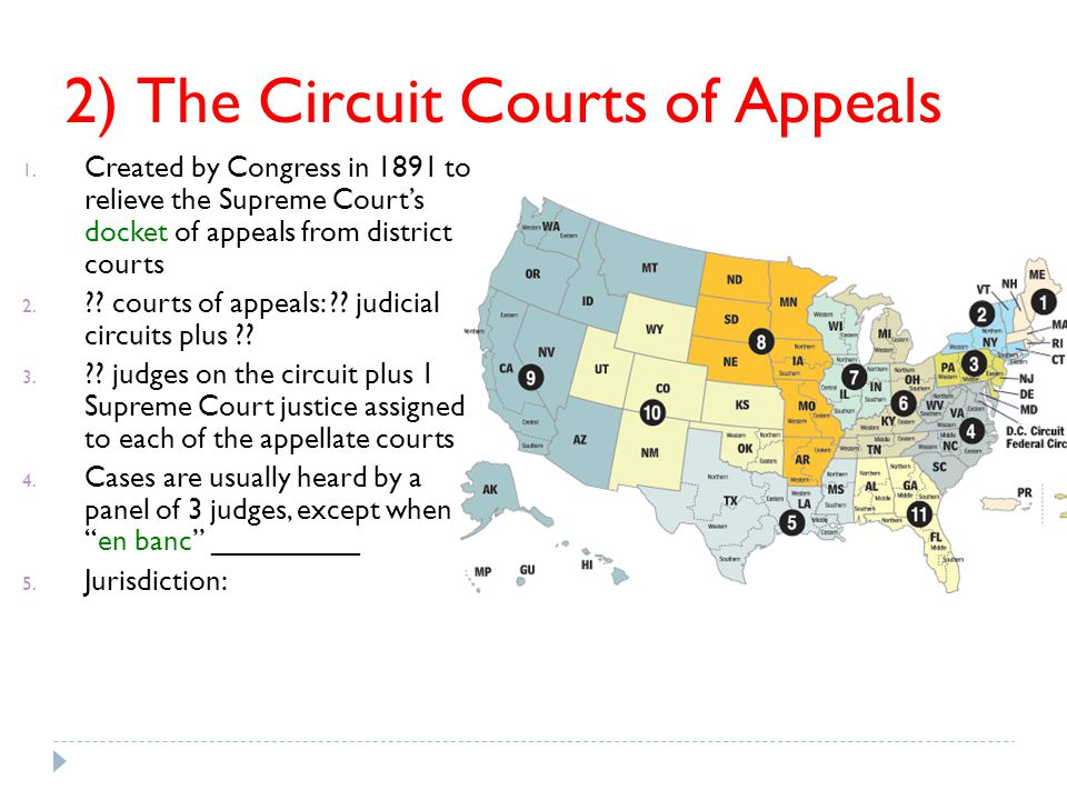 2) The Circuit Courts of Appeals