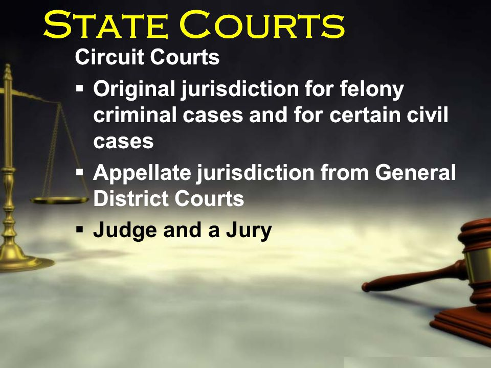 State Courts Circuit Courts