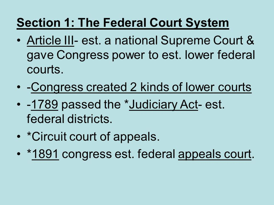 Section 1: The Federal Court System