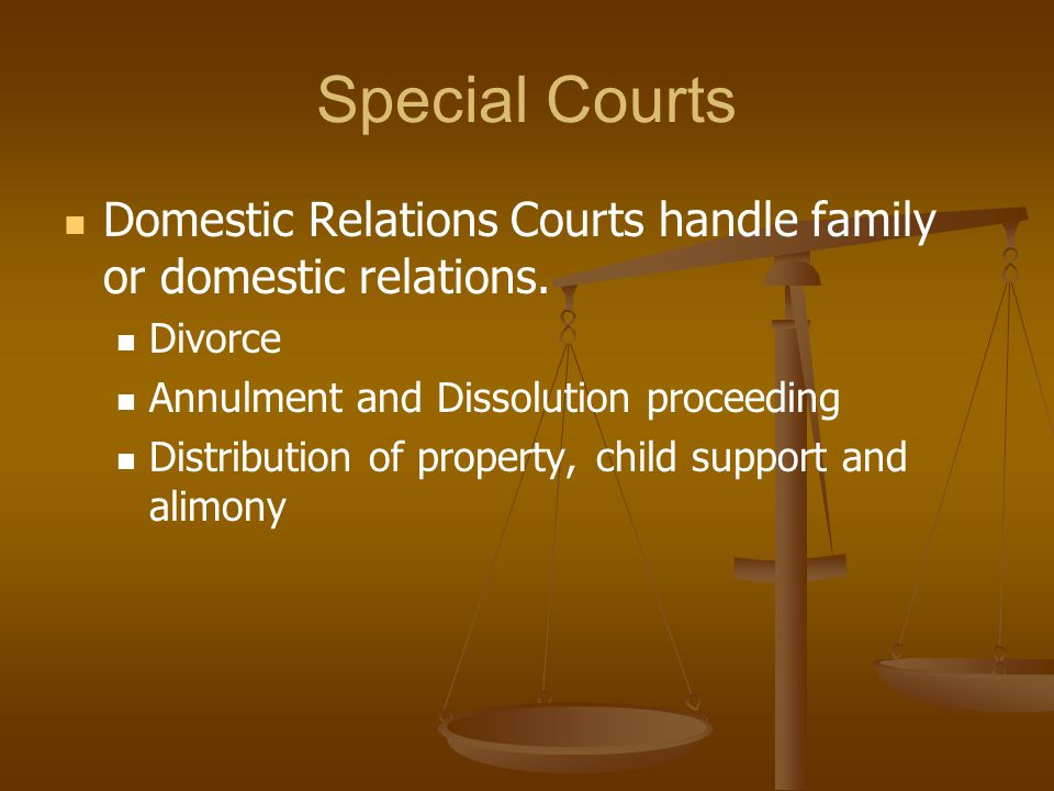 Special Courts Domestic Relations Courts handle family or domestic relations. Divorce. Annulment and Dissolution proceeding.