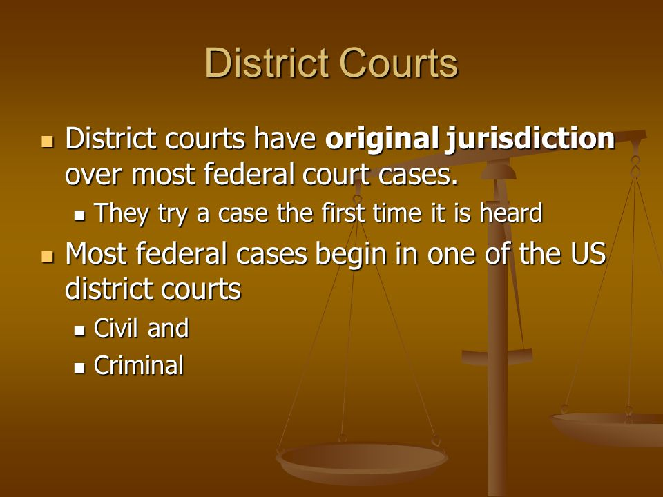 District Courts District courts have original jurisdiction over most federal court cases. They try a case the first time it is heard.