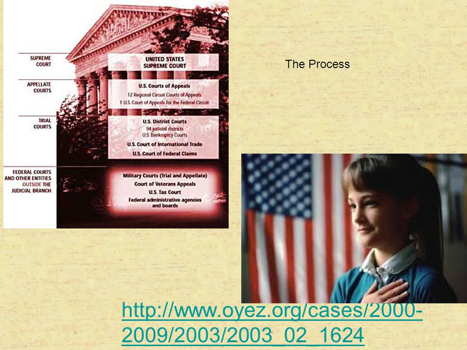 The Process http://www.oyez.org/cases/2000-2009/2003/2003_02_1624