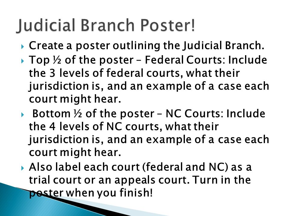 Judicial Branch Poster!