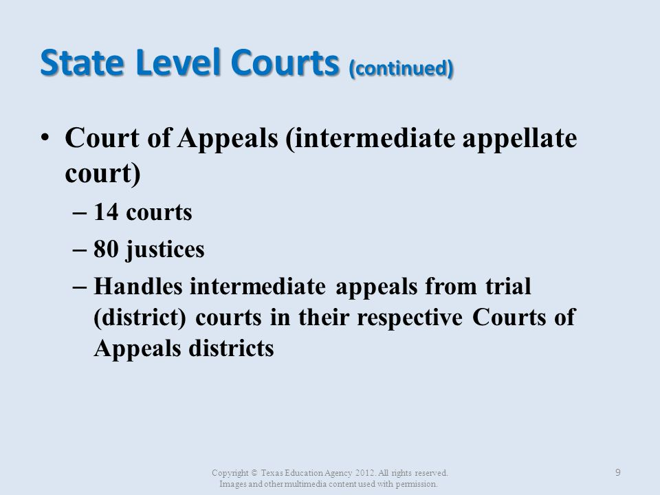 State Level Courts (continued)