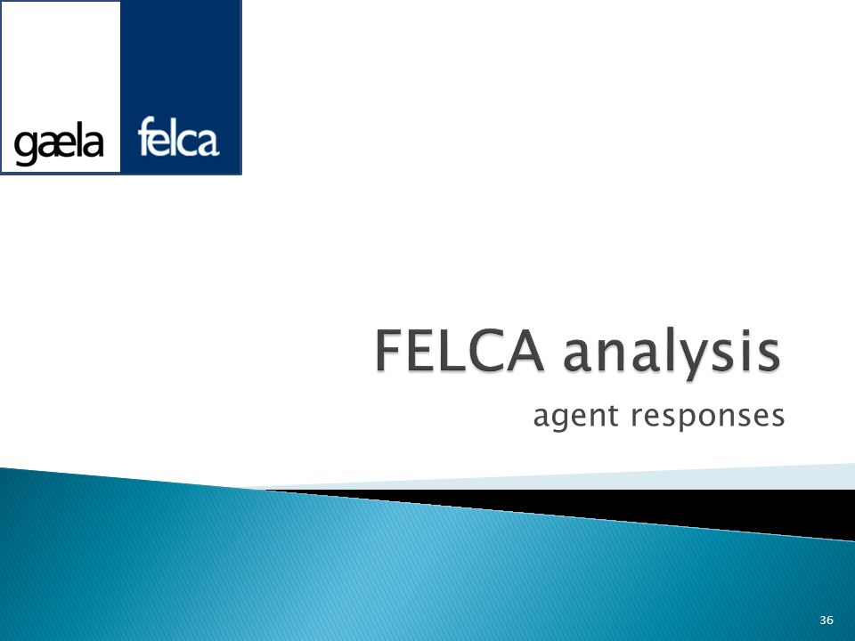 FELCA analysis agent responses