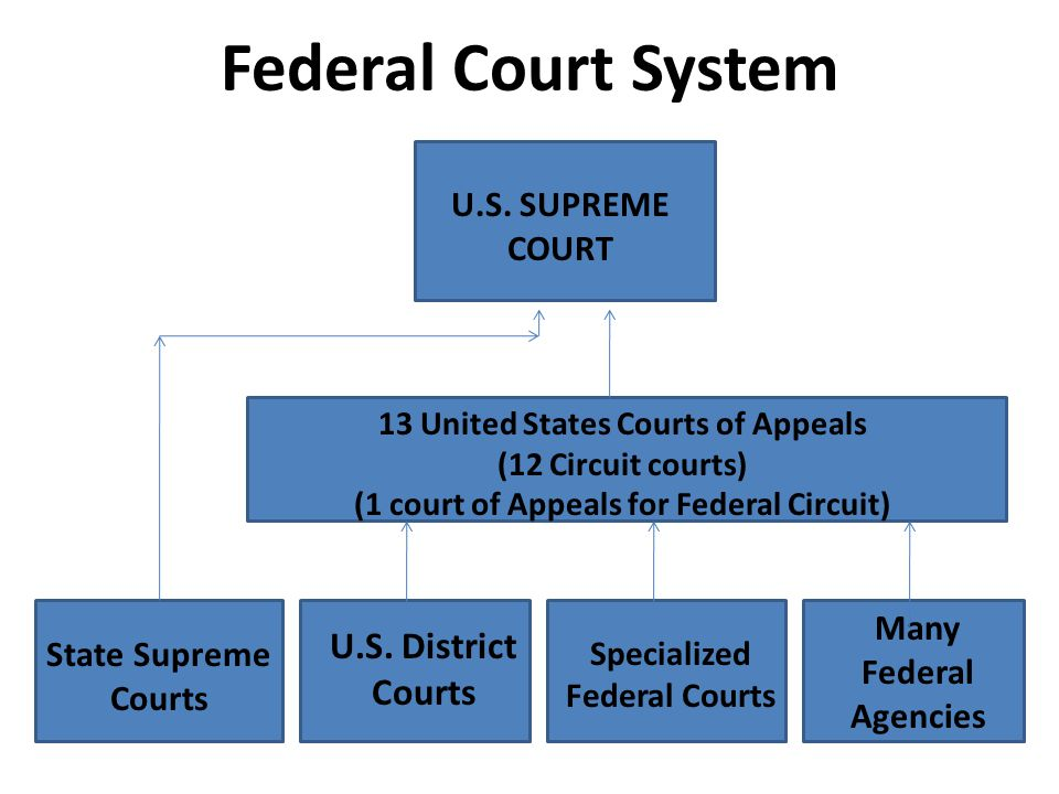 Federal Court System U.S. District Courts U.S. SUPREME COURT