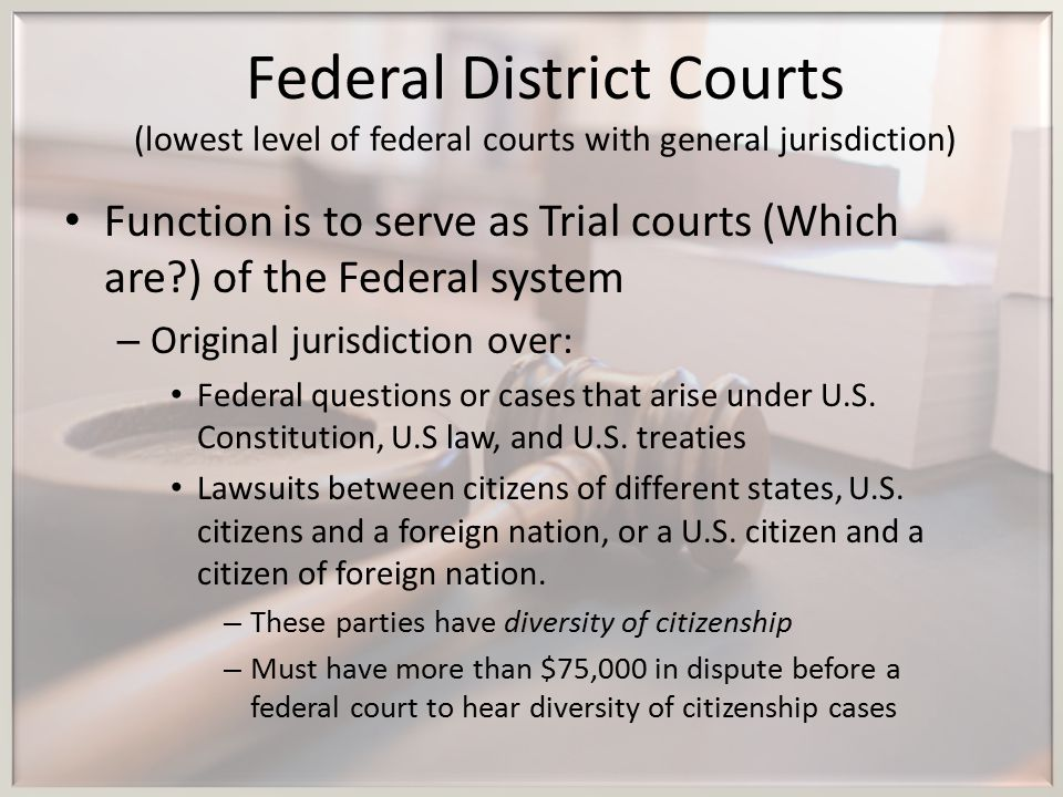Federal District Courts (lowest level of federal courts with general jurisdiction)