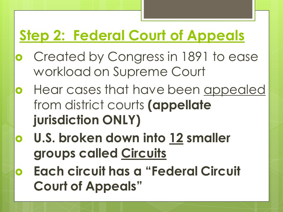 Step 2: Federal Court of Appeals