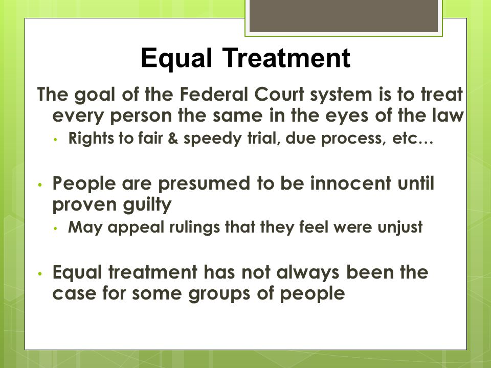 Equal Treatment The goal of the Federal Court system is to treat every person the same in the eyes of the law.