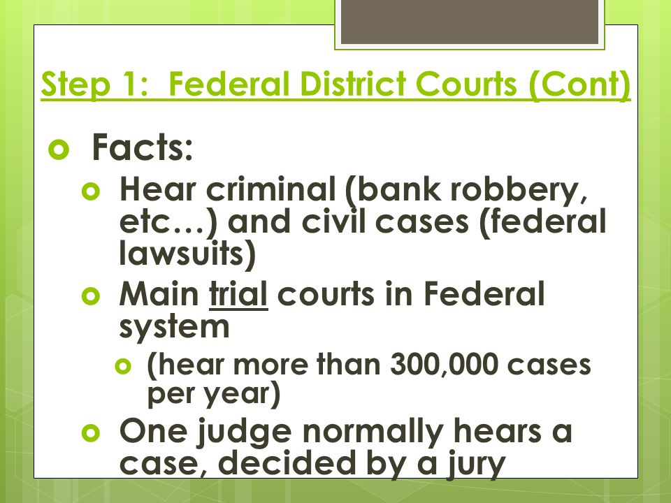 Step 1: Federal District Courts (Cont)