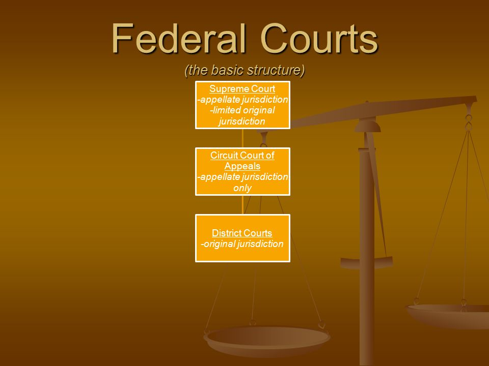 Federal Courts (the basic structure)