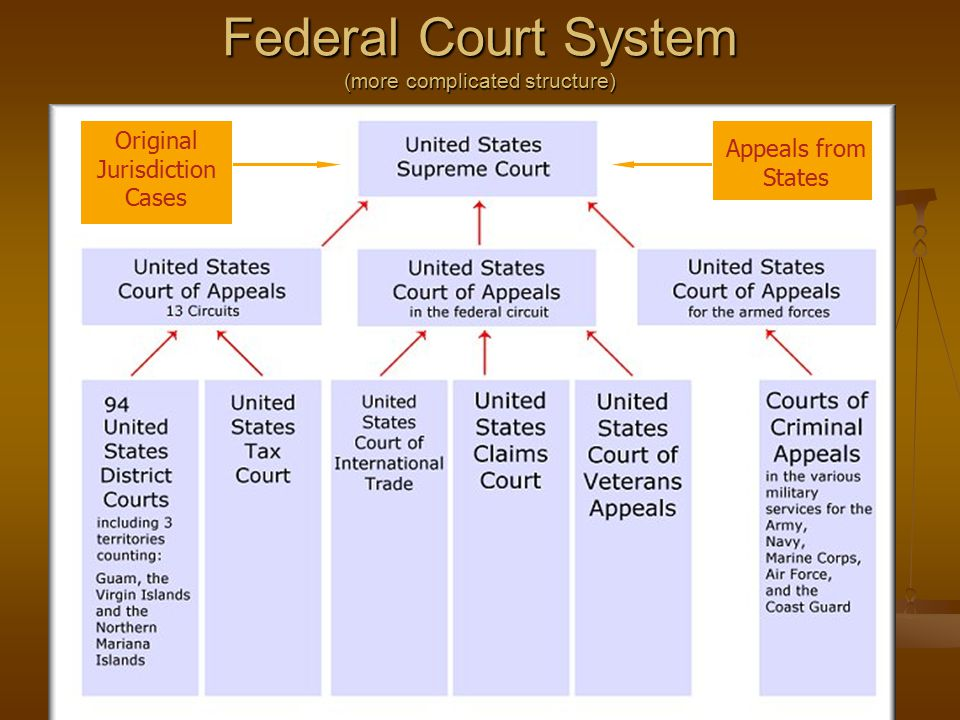 Federal Court System (more complicated structure)