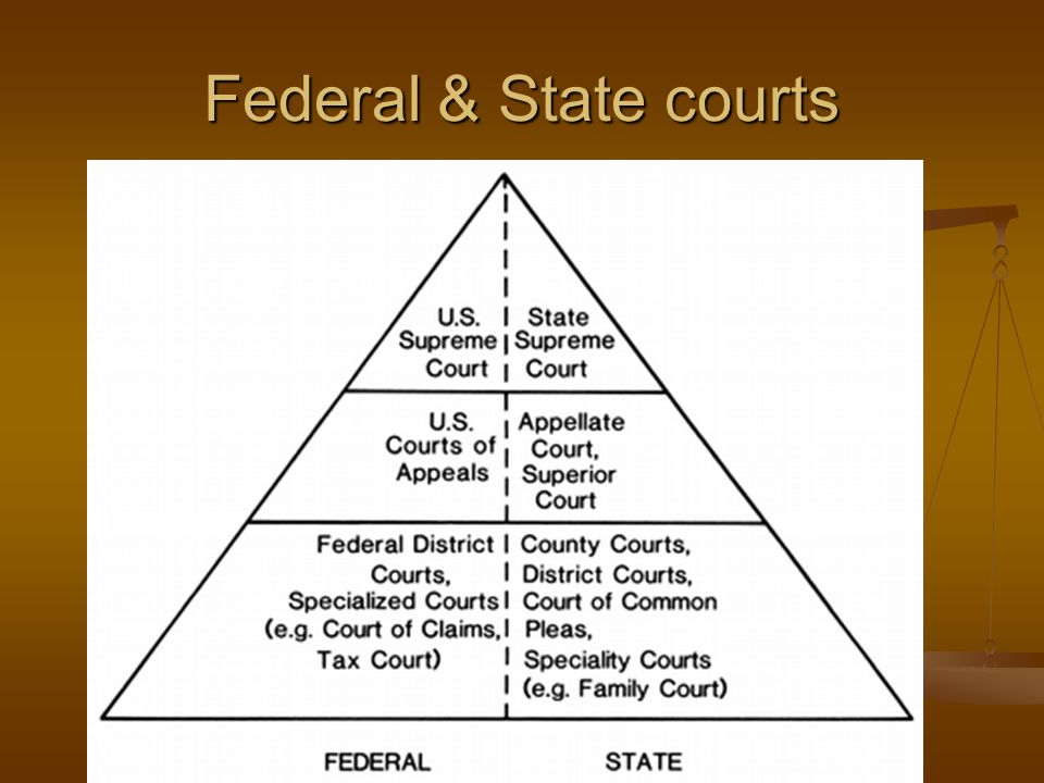 Federal & State courts