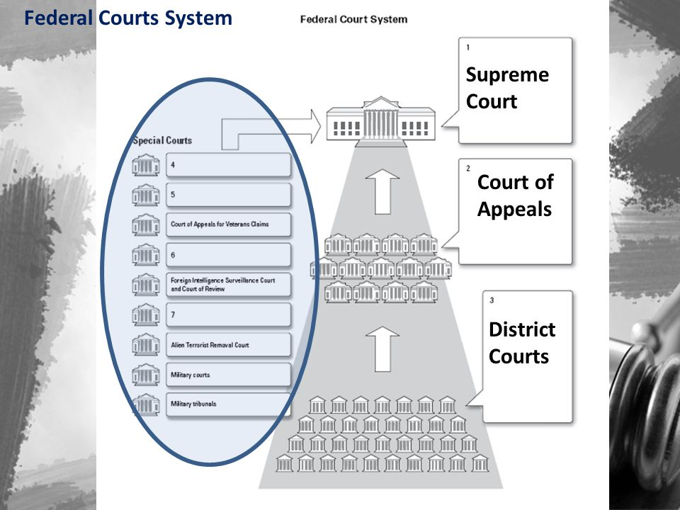 Federal Courts System Supreme Court Court of Appeals District Courts