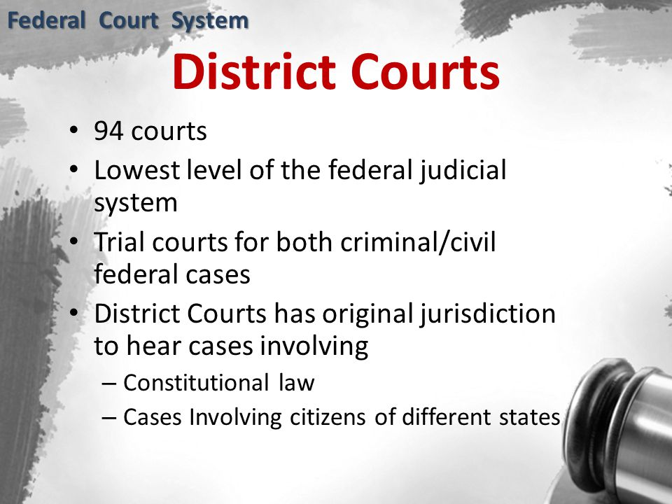 District Courts 94 courts Lowest level of the federal judicial system