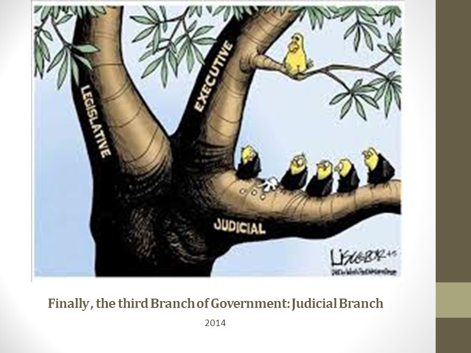 Finally , the third Branch of Government: Judicial Branch