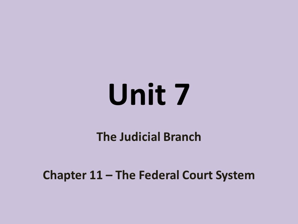 The Judicial Branch Chapter 11 – The Federal Court System