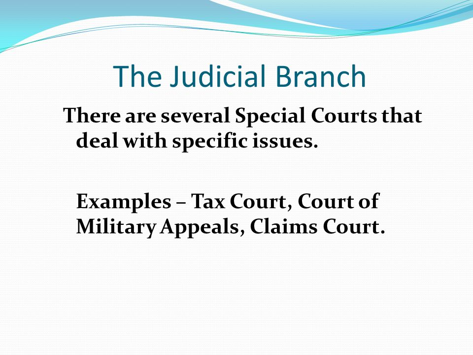 The Judicial Branch There are several Special Courts that deal with specific issues.