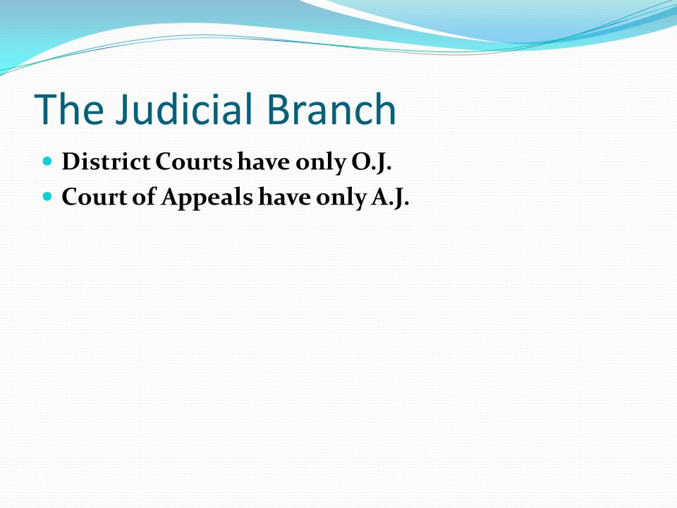 The Judicial Branch District Courts have only O.J.