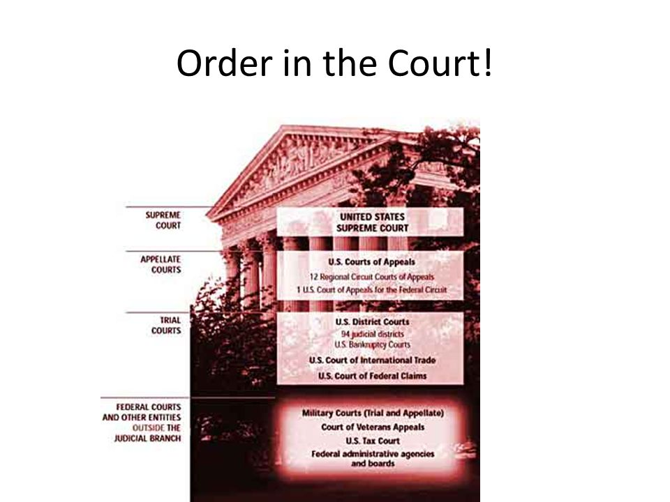 Order in the Court!