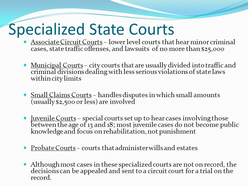 Specialized State Courts